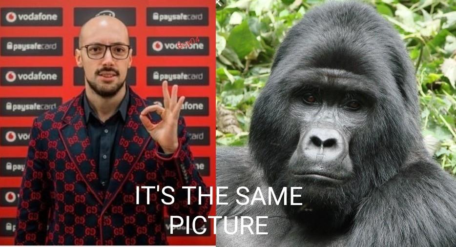 Se non lo conoscete cercatelo su youtube, RampageInthebox - meme