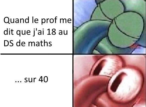 DS... sur 40 - meme