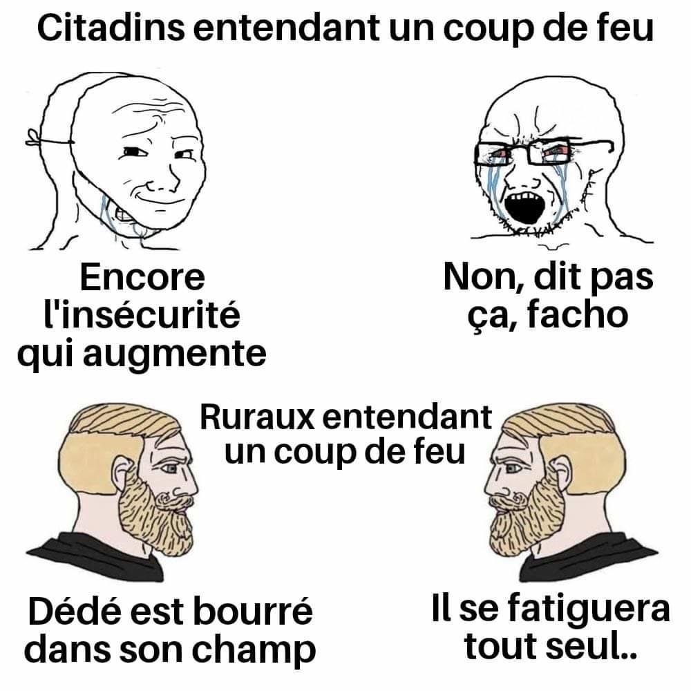 Citadins vs ruraux - meme