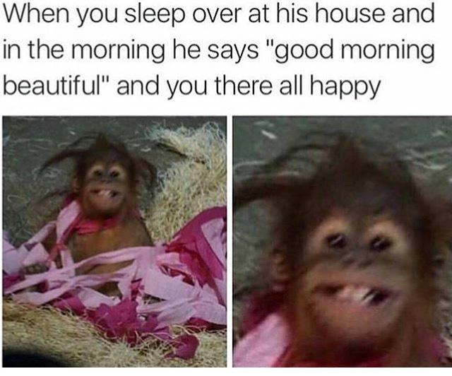 Make her night, then make her morning! - meme