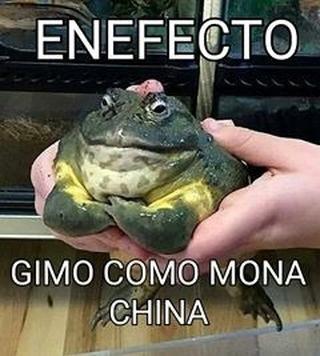 Ene - meme