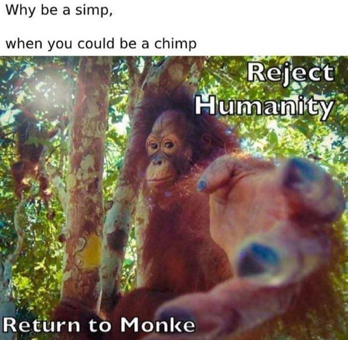 Be a Monke - meme
