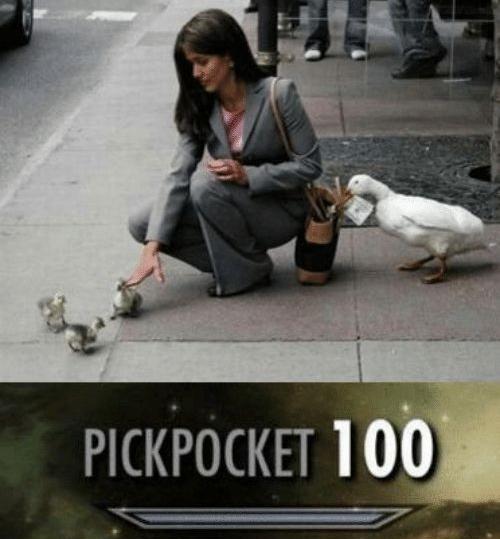 Duck thief - meme