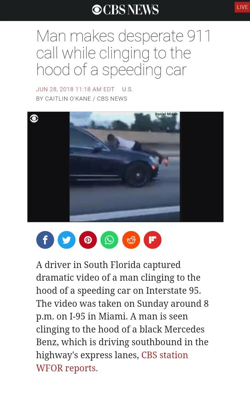 Florida Man strikes again - meme