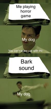 Bark! *NYOOM* - meme