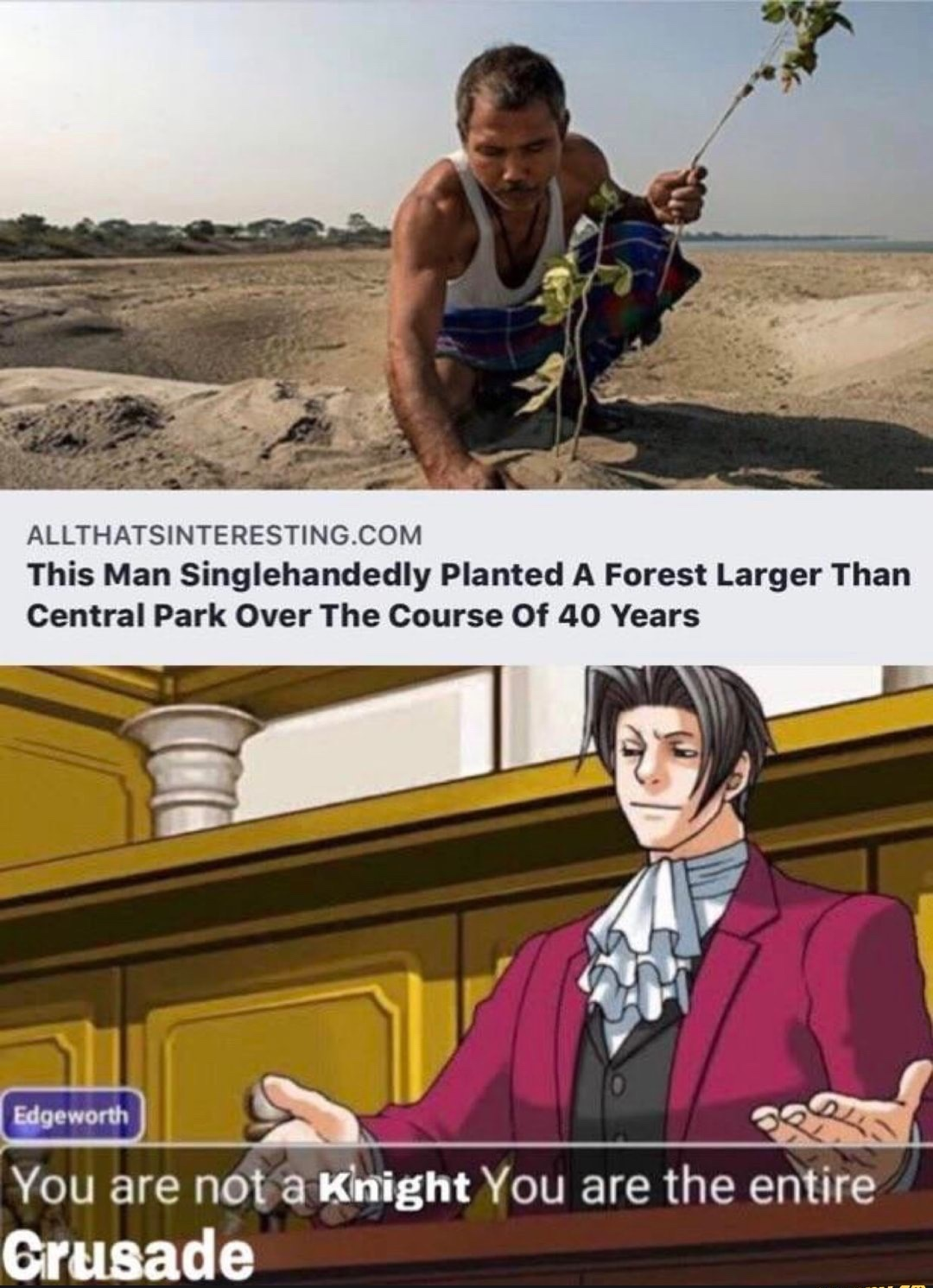 ecology - meme