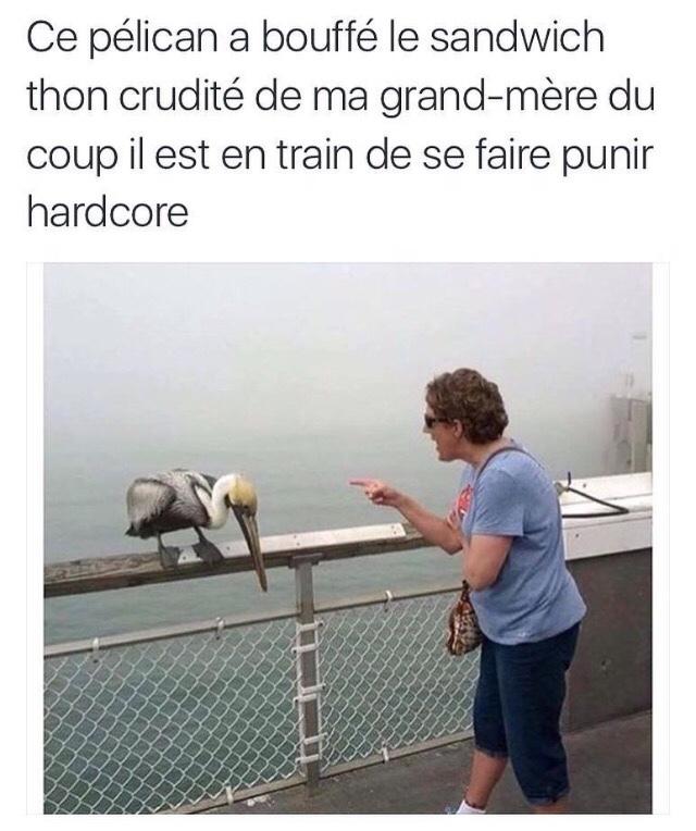 BONNE ANNÉE  - meme