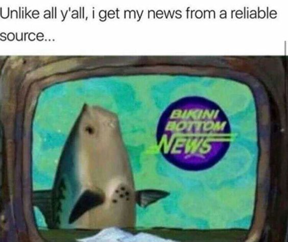 TRUE NEWS - meme