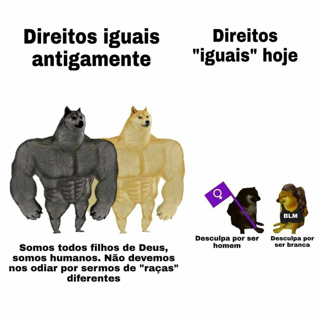 @portallibertarianismo - meme