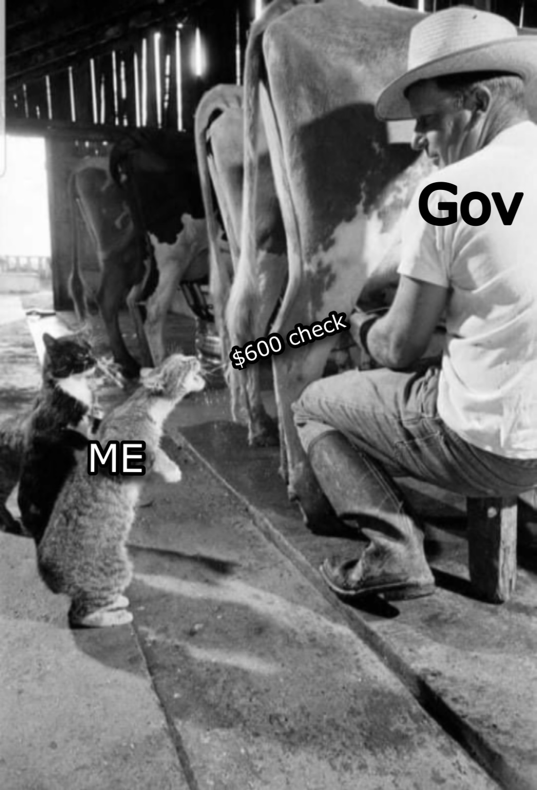 Something like that - meme
