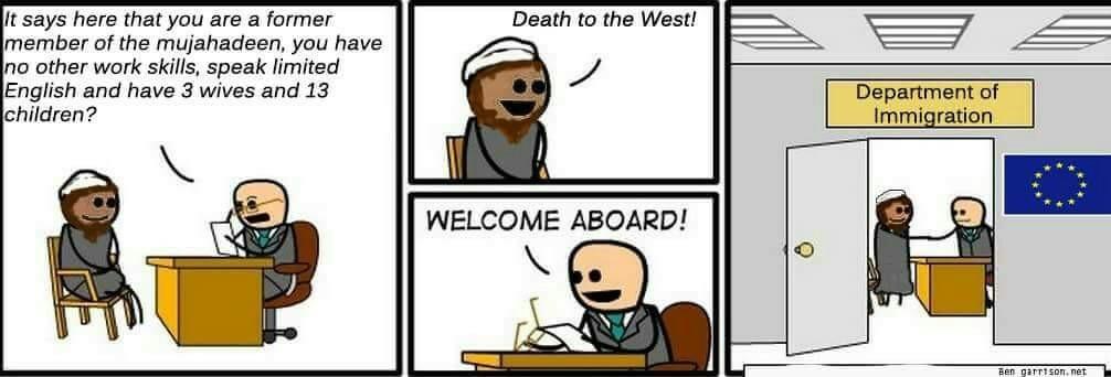 EU in a nutshell - meme