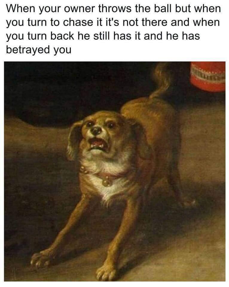 I TRUSTED YOU - meme
