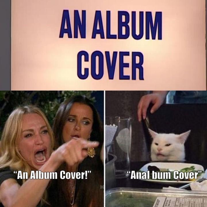 An Album Cover? - meme