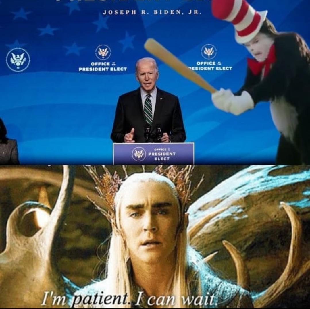 Thecatwitabatdestroysbiden - meme
