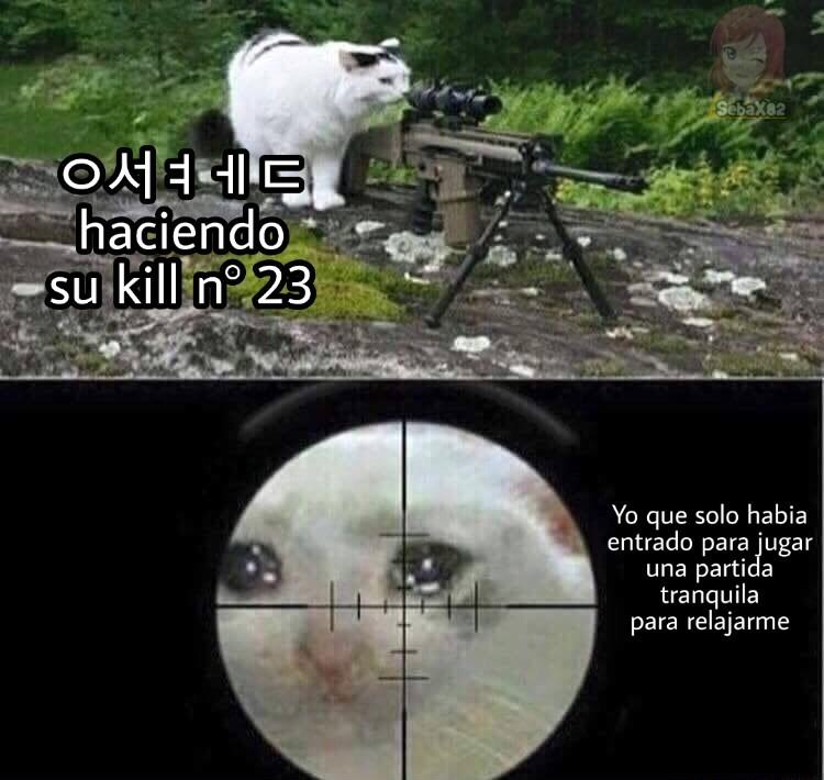 coreanos - meme