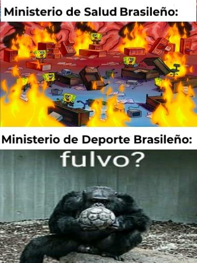 Contexto: Brasil esta vuelto m1erda por el Coronavirus y aun así quieren hacer la Copa América allá - meme