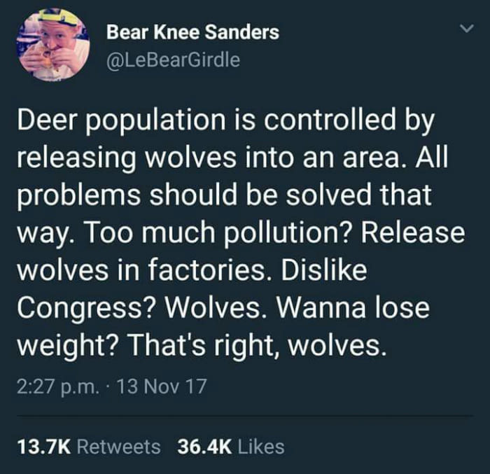 We need some wolves.... - meme