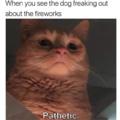 Pathetic creature