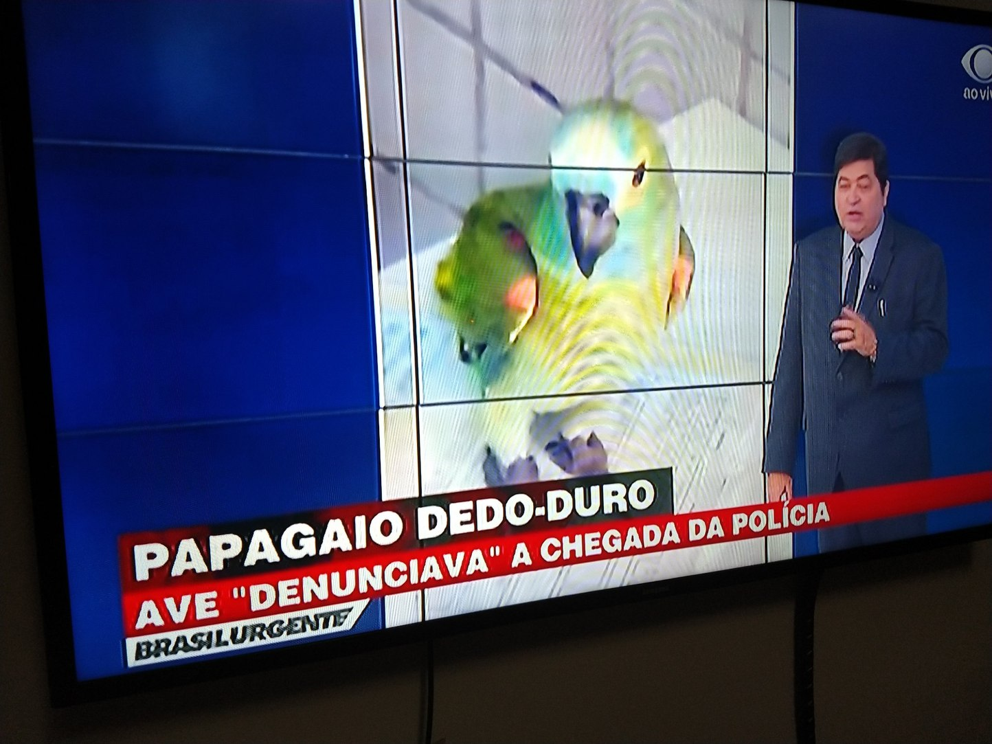 Isso aí não falta mais nada - Meme by PatusVerdis :) Memedroid