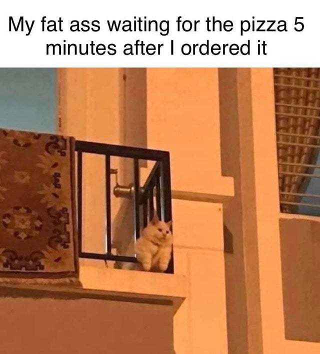 My fat ass waiting for the pizza 5 minutes after I ordered it - meme