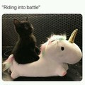 Cute cat on unicorn