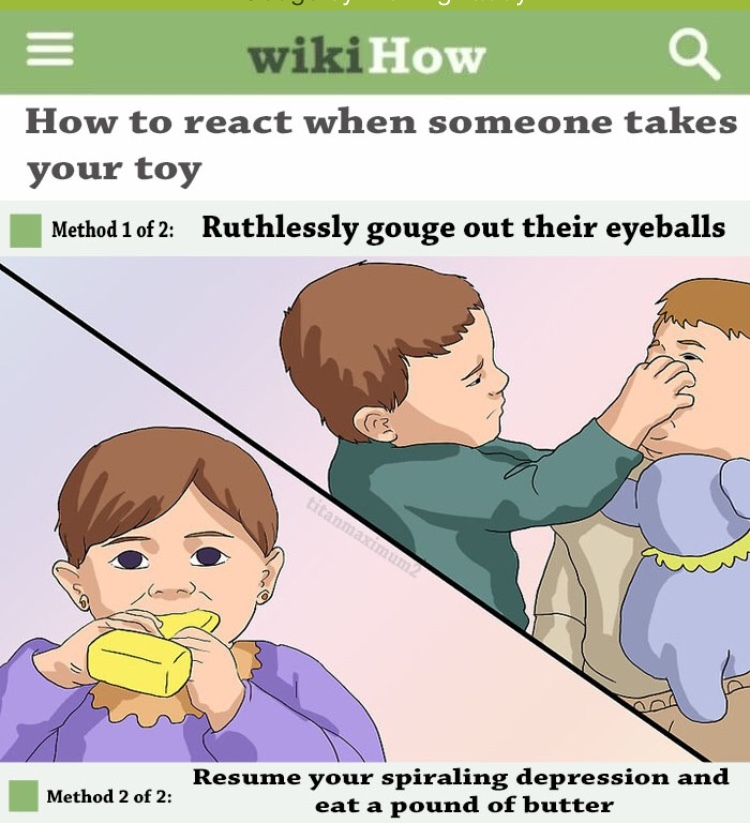 I love wikihow quality - meme