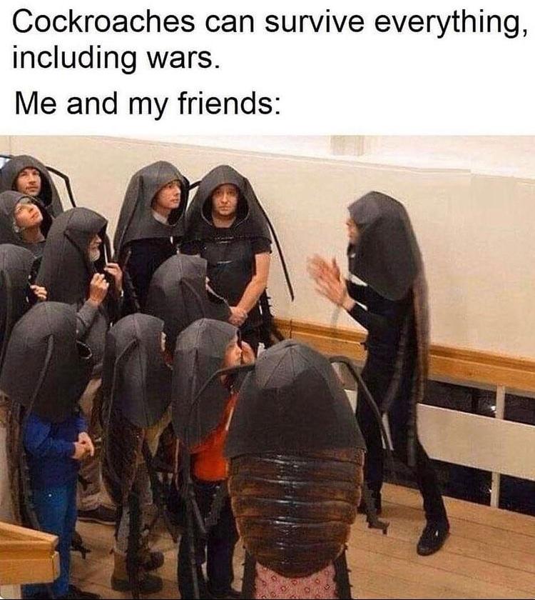 me and the bug boys - meme