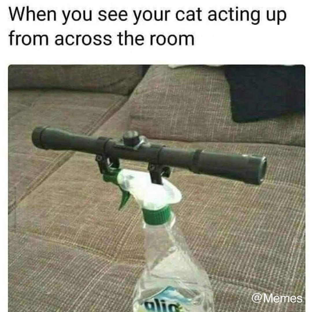 Sniper - meme