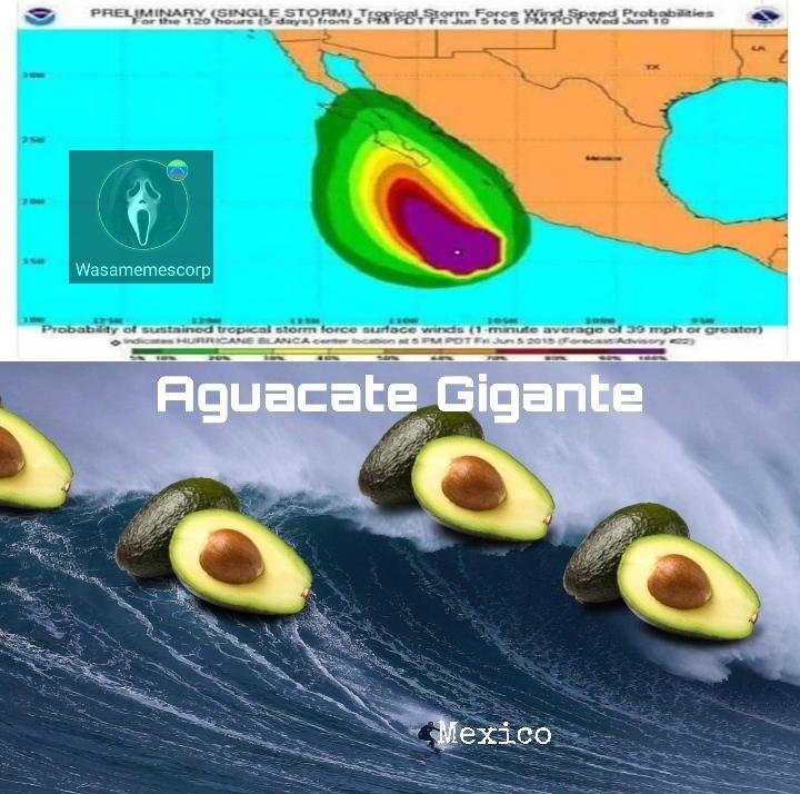 Aguacatalipsis - meme