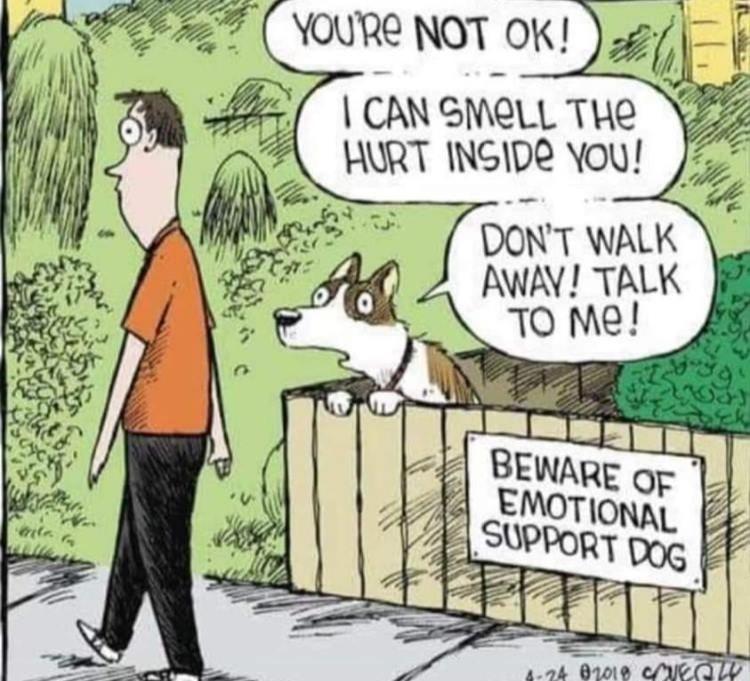 Don't walk away - meme