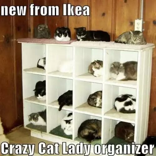 I want one for my home o/ - meme