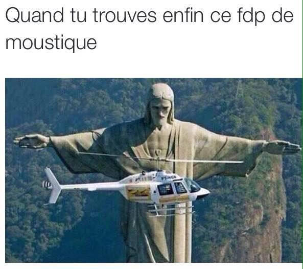 putain de moustiques - meme