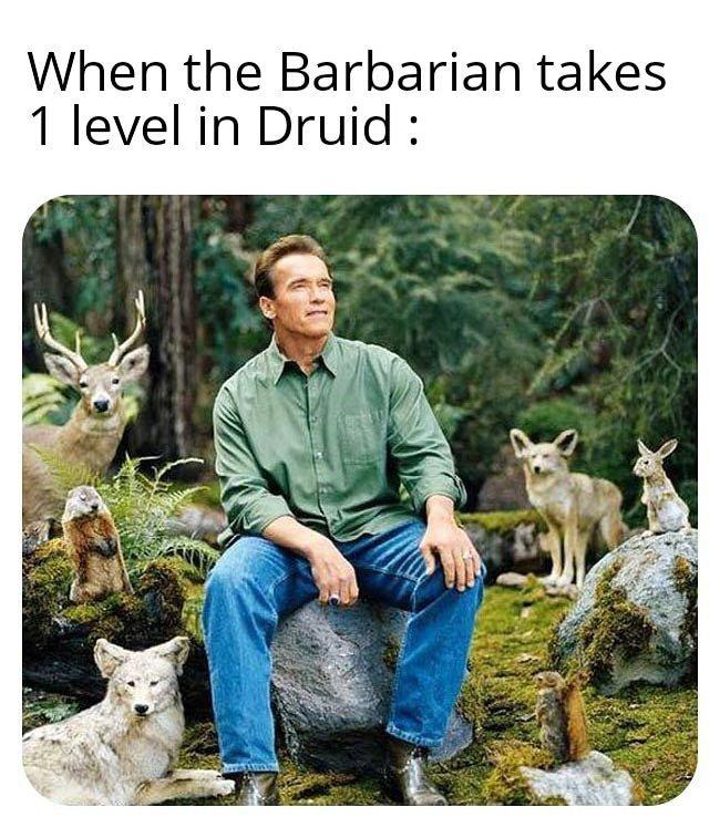 Drubarian - meme
