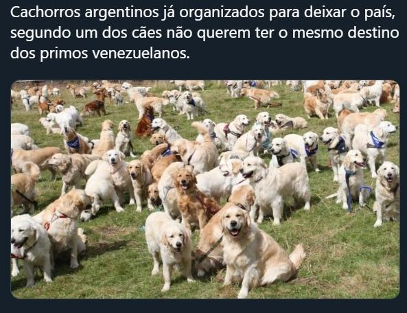A Argentina será a nova Venezuela - meme
