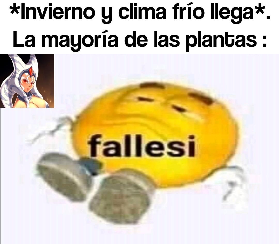 Falleci x( - meme