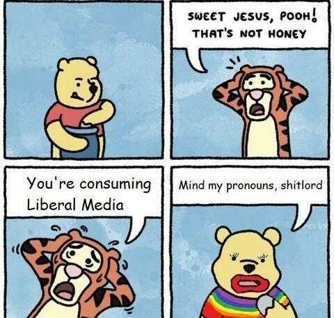 Mind the pronouns - meme