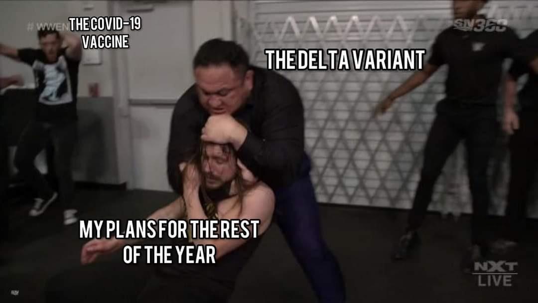 WWE or AEW - meme