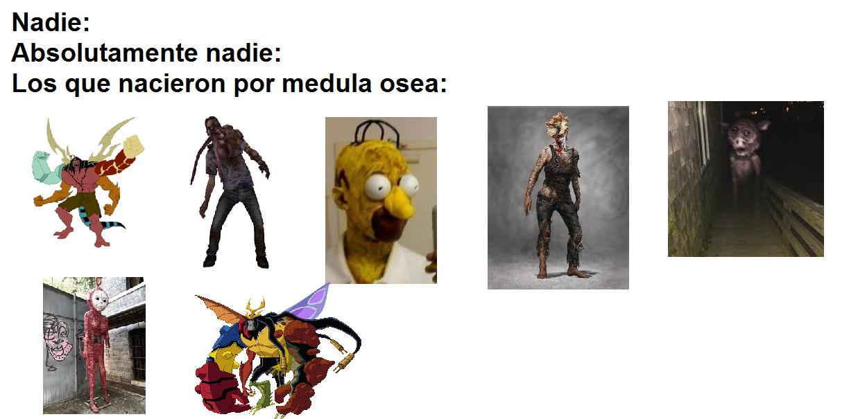 Medula osea - meme