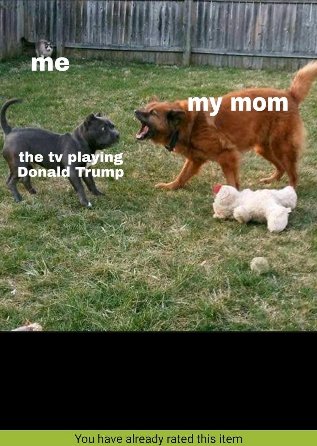 Fygi - meme