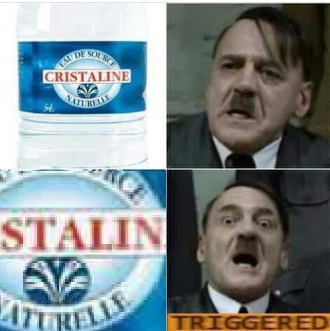 HITLER TRIGGERED - meme