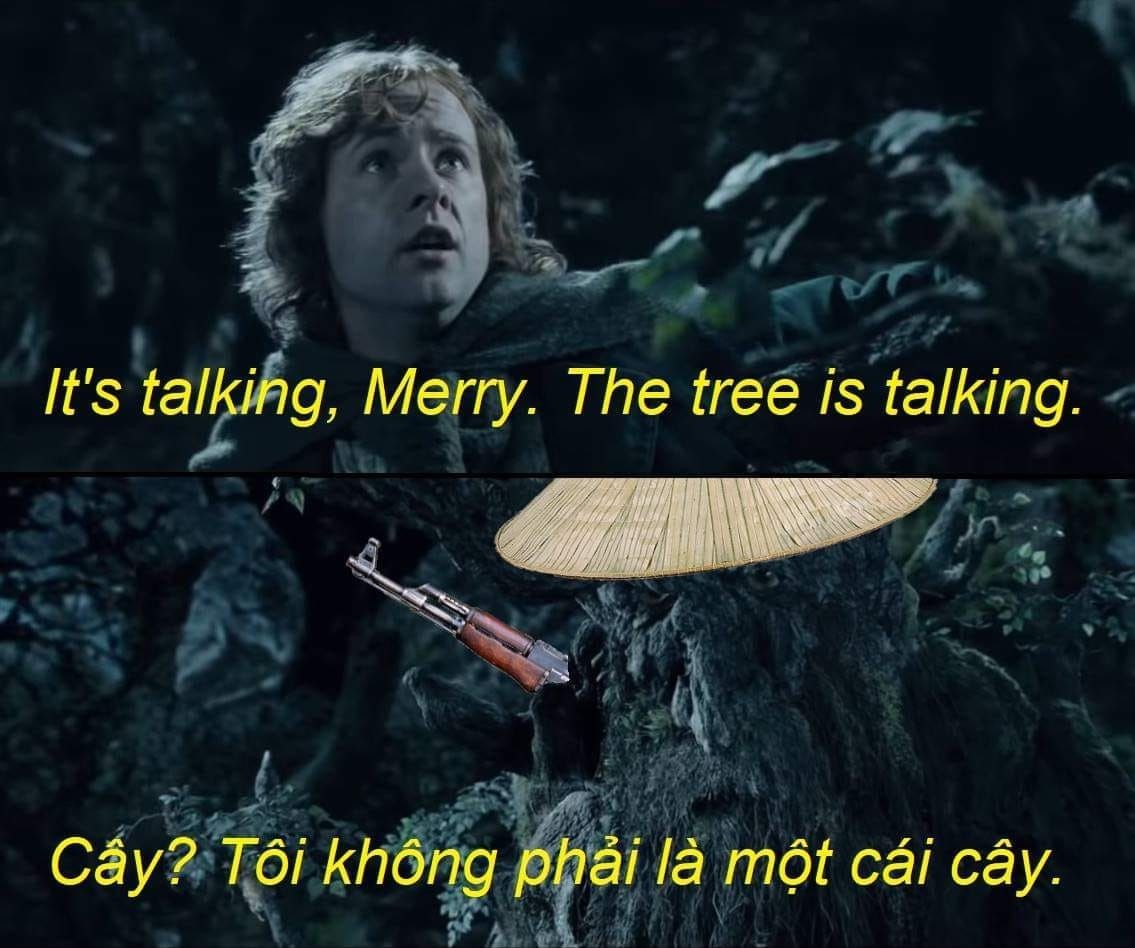 the trees say something in Vietnamese - meme