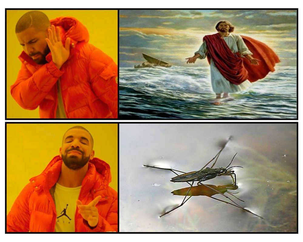 walk - meme