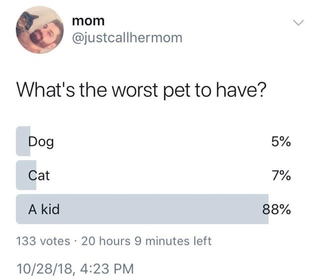 A kid is the worst pet to have - meme