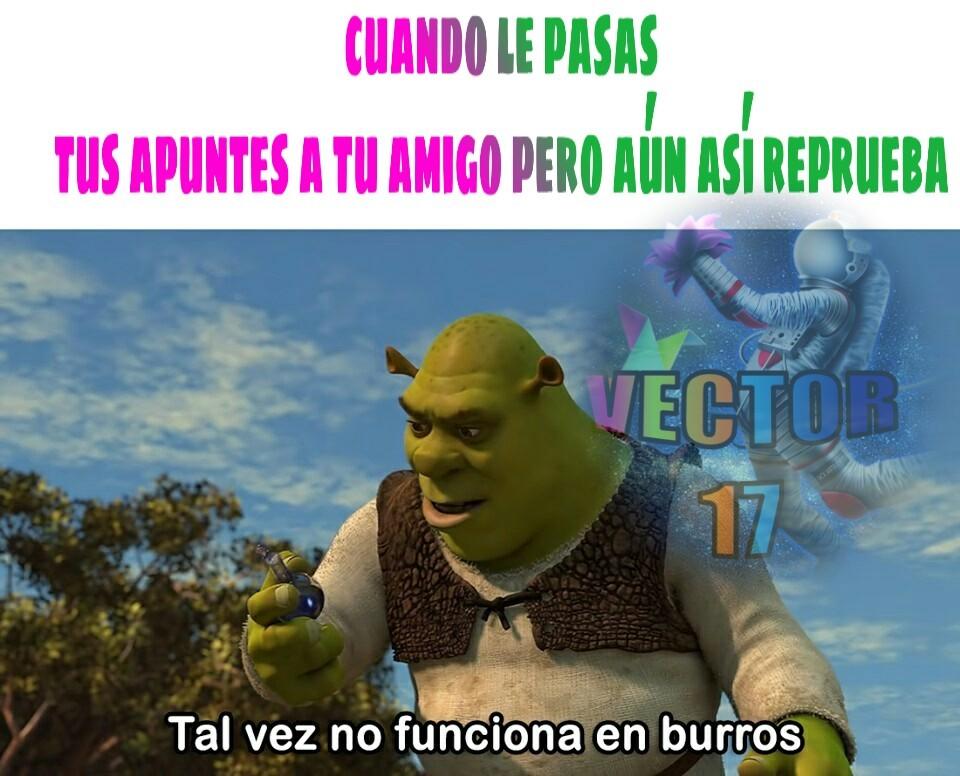 Bgv - meme