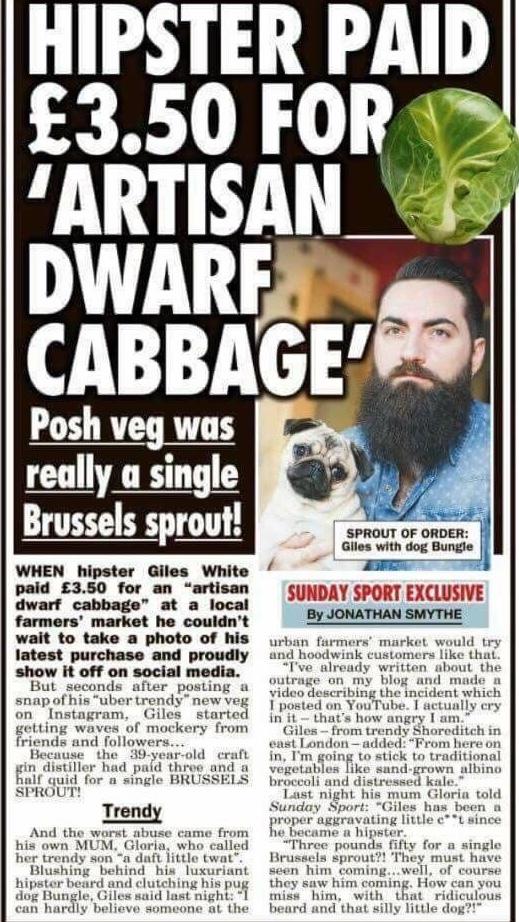 cabbage - meme