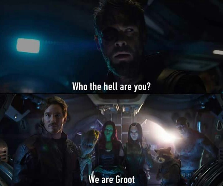 We are all groot - meme