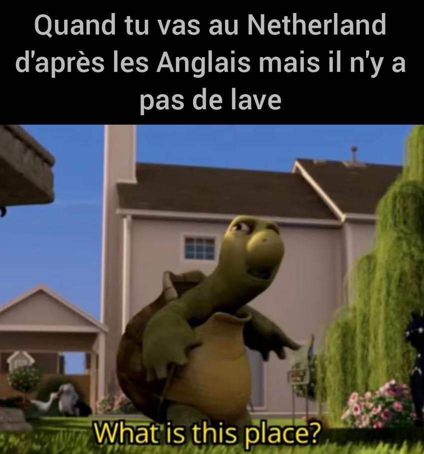 Fresh juicy meme (trad du bled...)