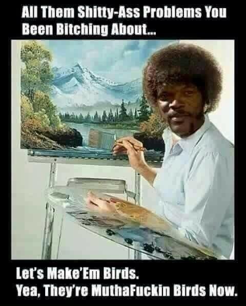 Mutha Effin birds - meme