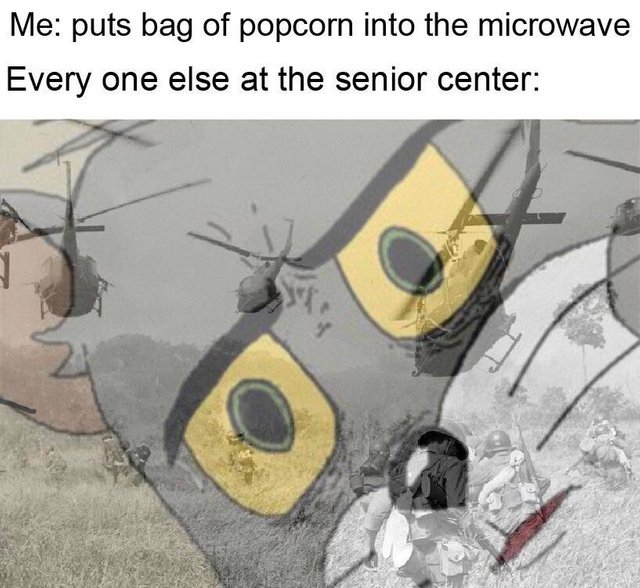 Popcorn bag into the microwave - meme