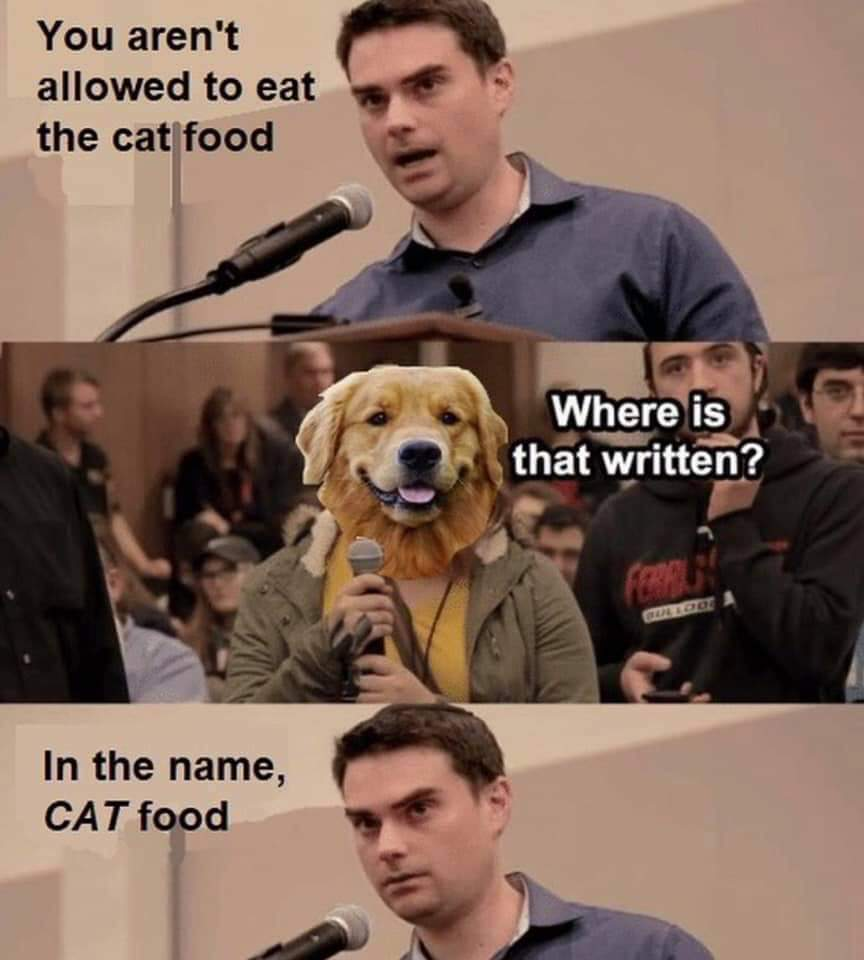 Been Shapiro owns dog - meme